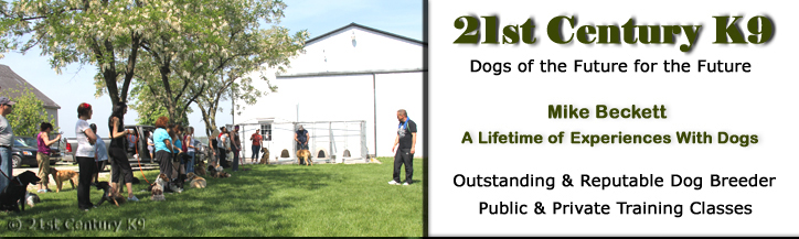 21st Century K9 is now serving Maricopa County and Greater Pheonix area.